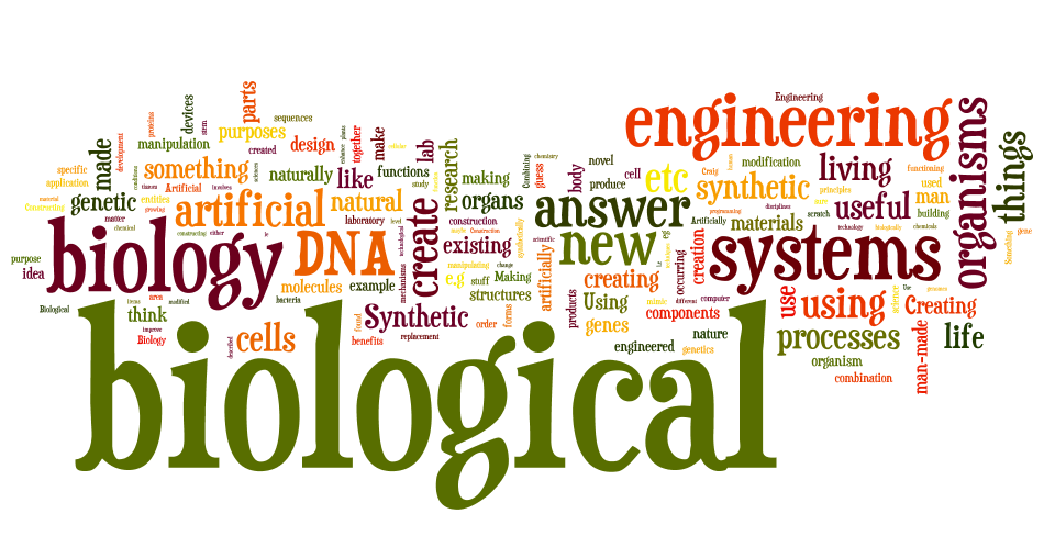 Word cloud with answers from: What is synthetic biology?